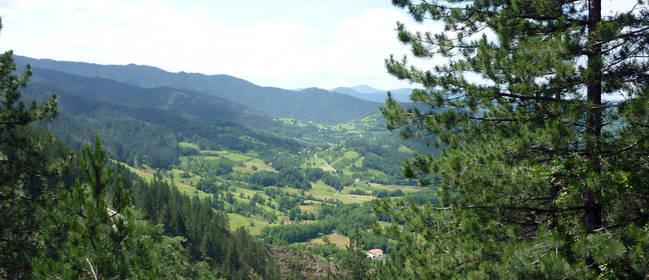 Ausflugsziele und Attraktionen in Serbien