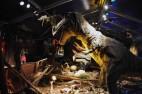 T-Rex-World